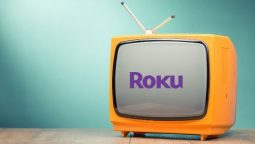 should i unplug my roku stick when not in use